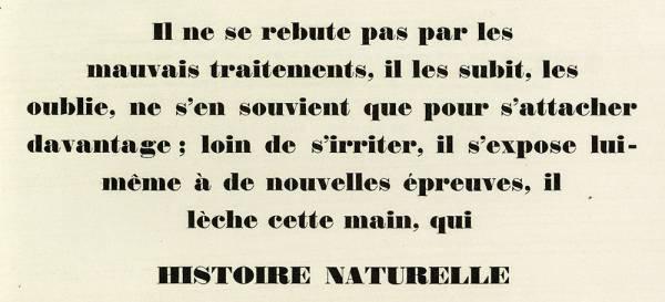Normandes Turlot