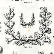 Lauriers et Médailles, Exemple, Lauriers et Médailles, n° 1