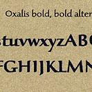 Oxalis, Exemple, Oxalis, n° 6